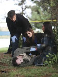 Castle 3.08 Murder Most Fowl Review