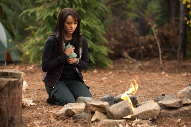 "The Vampire Diaries 4.13 ""Into the Wild"" Review"