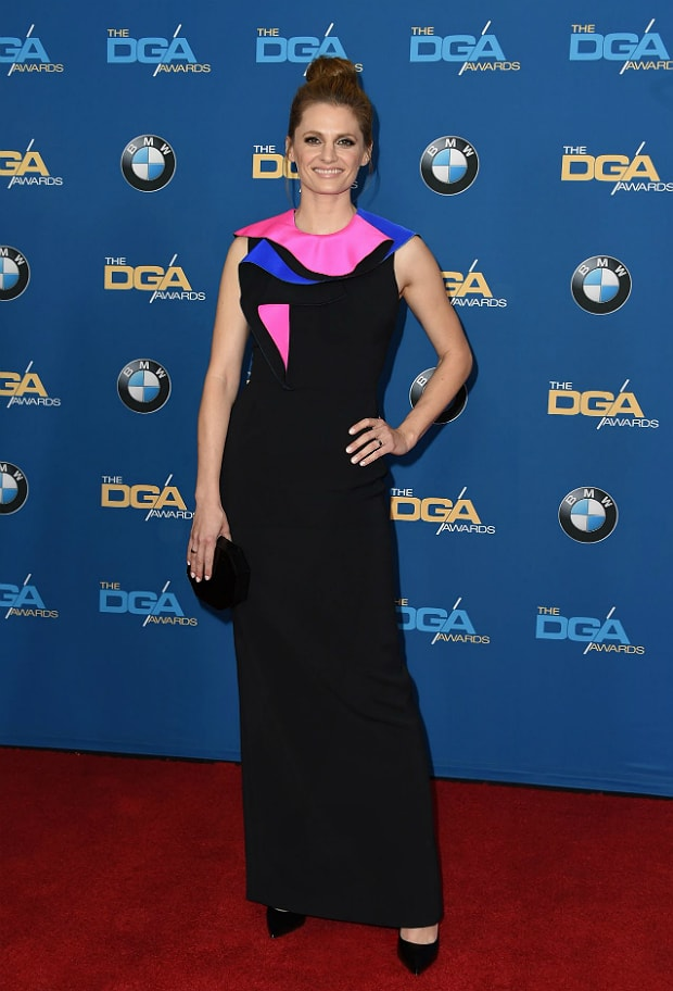 Stana Katic DGA Awards