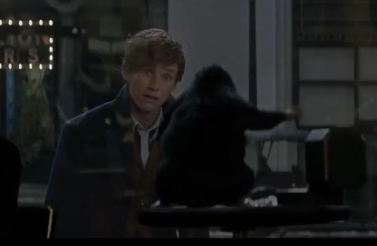 An Honest Trailer for Fantastic Beasts and Where to Find Them