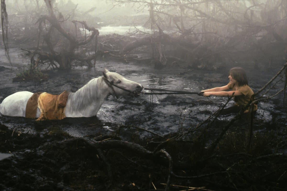 "Artax Sinking into The Swamp of Sadness in ""The Neverending Story ..."