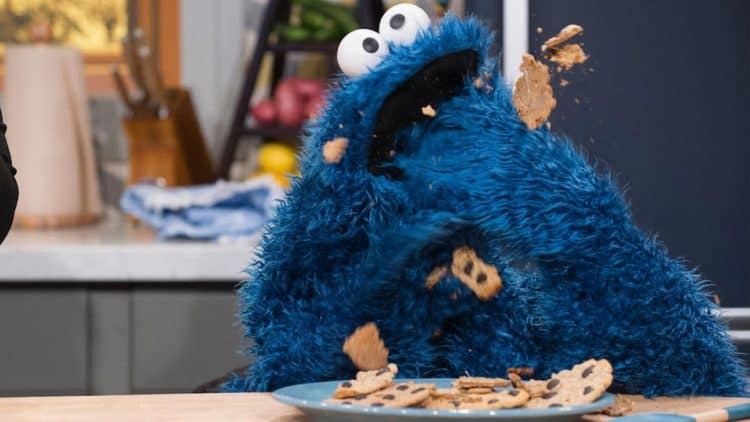 Image result for cookie monster